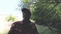 Thumbnail of Alex Knüll .