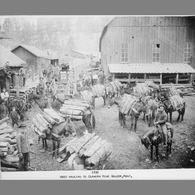 View of Corral Yard with Pack Mules Ready for Wood Hauling to the Elkhorn Mine, Boulder, Mont., 1890
