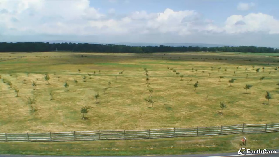 Gettysburg National Military Park Live View